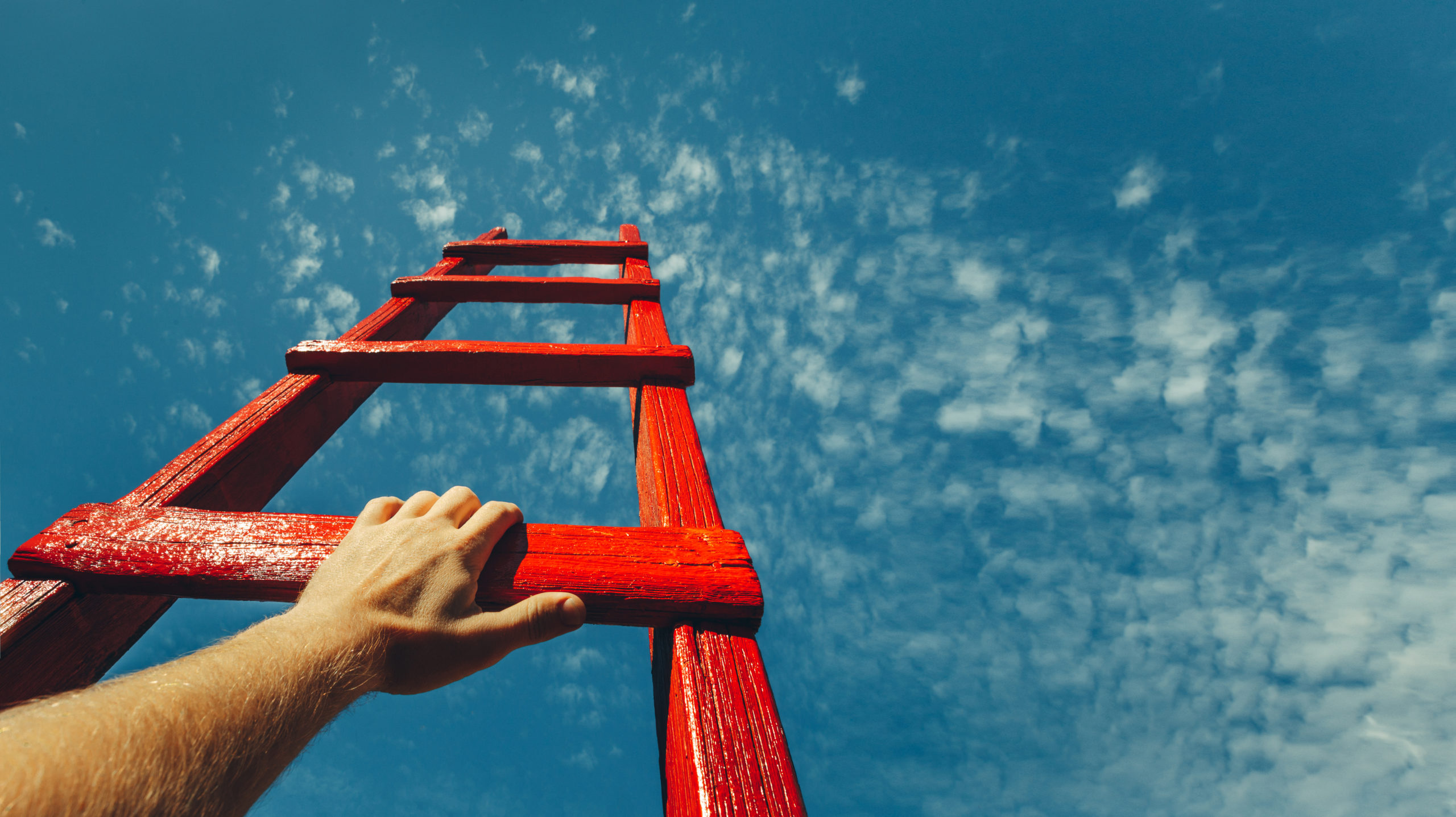 executive development / leadership coaching / business coaching / indywidualne plany rozwojowe / trening umiejętności menedżerskich
